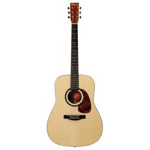 Norman Guitars Studio Series:ST68  (アコースティックギター)(送料無料)|kurosawa-unplugged
