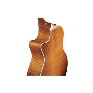 Taylor 614ce(今ならクリップ式チューナー&Matin弦・3セットプレゼント)【ONLINE STORE】(お取り寄せ)|kurosawa-unplugged|02