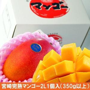 お中元 高級 宮崎完熟マンゴー 3L2個(糖度15度以上)...