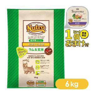 ニュートロ ナチュラルチョイス ドッグフード ラム&玄米 成犬用 超小型犬〜小型犬用 6kg