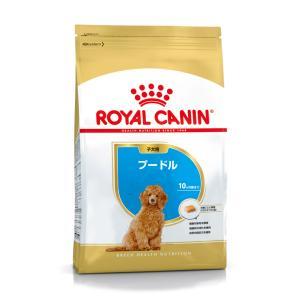 ロイヤルカナン ROYALCANIN ドッグフード プードル 子犬用 生後10ヶ月齢まで 1.5kg (ロイヤルカナン ROYAL CANIN/ドライフード/子犬用 パピー ・プードル専用)
