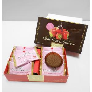 工房のイチゴショコラクッキー(小) 10枚入|kusatu-meisan
