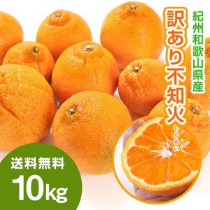 デコポンと同品種 しらぬい 不知火 10kg 和歌山県産 訳...