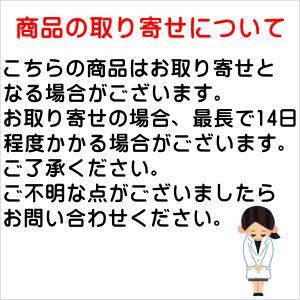 小林製薬 亜鉛 お徳用 120粒|kusurino-wakaba|05