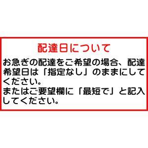 コーセー ネイチャー アンド コー ボタニカル シャンプー 500ml / ポイント10倍|kusurino-wakaba|02