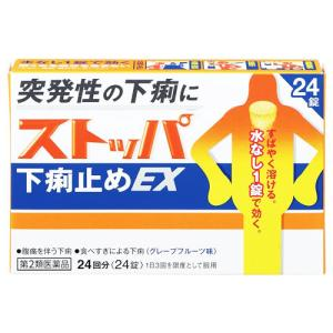 【第2類医薬品】ライオン ストッパ下痢止めEX (24錠)