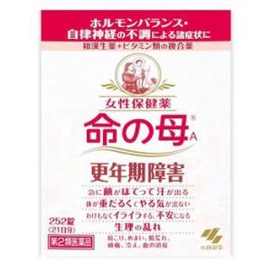 【第2類医薬品】小林製薬 女性保健薬 命の母A (252錠)