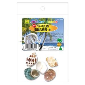 三晃商会 581 オカヤドカリの宿替え貝殻 S...の関連商品5