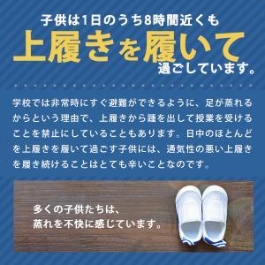 3足セット キッズ ジュニア 上履き シューズ スニーカー IFME イフミー SC-0002 福袋 白 青 ピンク|kutsu-nishimura|04