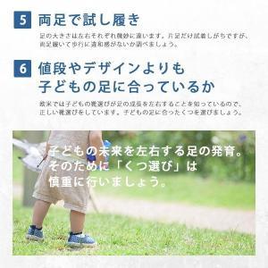3足セット キッズ ジュニア 上履き シューズ スニーカー IFME イフミー SC-0002 福袋 白 青 ピンク|kutsu-nishimura|09