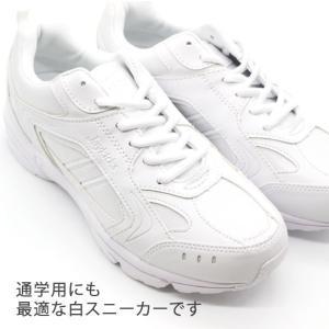 スニーカー ローカット メンズ レディース ジュニア 靴 XSTREET XST-214|kutsu-nishimura|02