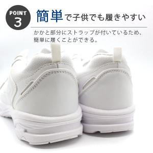 スニーカー ローカット メンズ レディース ジュニア 靴 XSTREET XST-214|kutsu-nishimura|05