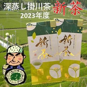 新茶 2021 深蒸し掛川茶 静岡 100g×2本