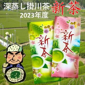 2021 新茶 静岡県 深蒸し掛川茶 100g×2本