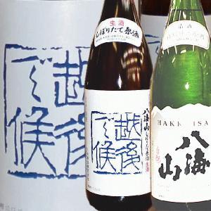 八海山 越後で候 青越後&特別純米酒 セット(1800ml各1本)発送箱入 クール便|kuwaharasyoten