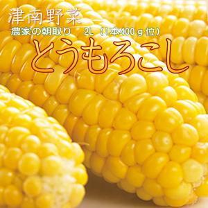 生産農家 朝採り とうもろこし 5kg (12〜15本位)7月末〜8/末 送料込(一部除く)|kuwaharasyoten