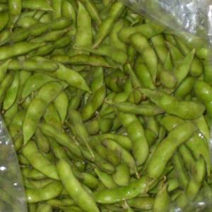 茶豆 枝豆 だだちゃ豆 晩成型 あまちゃ豆・5kg(農家 朝採り 茶豆 新潟産)|kuwaharasyoten