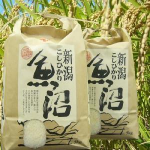 新米 30年産 魚沼産コシヒカリ 検査1等米 白米 5kg 当地 農家 の 旨い米|kuwaharasyoten