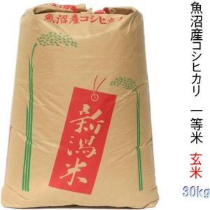玄米 30kg 新米 魚沼産コシヒカリ 30年(検査1等米)通販|kuwaharasyoten