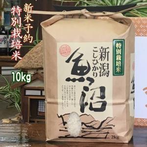 新米 30年 魚沼産 コシヒカリ 10kg 白米 特別栽培米(2018年産 一等米)|kuwaharasyoten