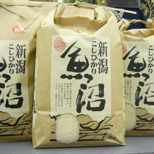 お米 5kg 魚沼産コシヒカリ 30年 新米「特別栽培米」白米当地農家の自慢のお米|kuwaharasyoten