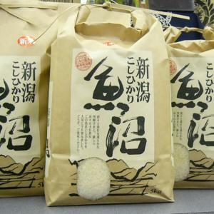 新米 魚沼産コシヒカリ 2kg 特別栽培米 白米(ギフト 粗品 人気)お米 30年 新米|kuwaharasyoten