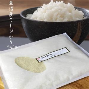 お米 送料無料 魚沼産 コシヒカリ【お試し1.05kg】7合...