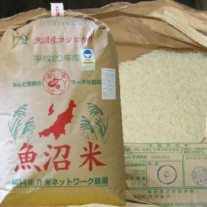 玄米 30kg 新米 魚沼産コシヒカリ 特別栽培米 30年産(発送は10/8日頃から)|kuwaharasyoten