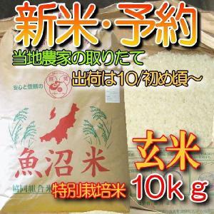 魚沼産コシヒカリ 新米 予約・玄米10k「特別栽培米 30年産」検査済 一等米|kuwaharasyoten