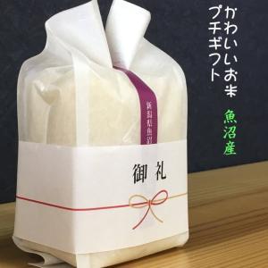 プチギフト お米 かわいい お米 魚沼産 コシヒカリ 3合 450g kuwaharasyoten