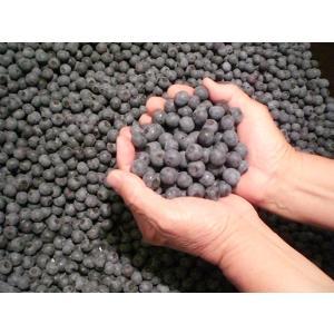 くよもん農園のお徳用サイズ冷凍ブルーベリー kuyomon