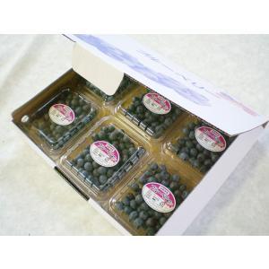 くよもん農園の採れたて生ブルーベリー100g6パックセット kuyomon