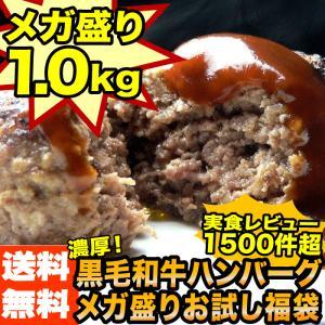 ハンバーグ お試し セット 1kg [黄金比率ハンバーグ4個& メンチカツ 4個] ポイント消化 肉 送料無料 訳あり ( 初回限定 )