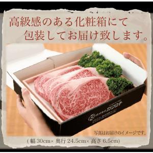 ブランド 和牛 サーロイン ステーキ 3枚x約200g | 送料無料 | セール お中元 食べ物 国産 牛肉|kwgchi|03