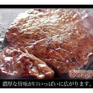 ブランド 和牛 サーロイン ステーキ 3枚x約200g | 送料無料 | セール お中元 食べ物 国産 牛肉|kwgchi|06