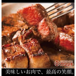 ブランド 和牛 サーロイン ステーキ 3枚x約200g | 送料無料 | セール お中元 食べ物 国産 牛肉|kwgchi|08