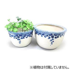 陶器水蓮鉢