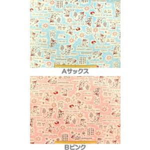 入園入学 <br>キャラクター生地 布 <br>ディズニー アナと雪の女王 ...