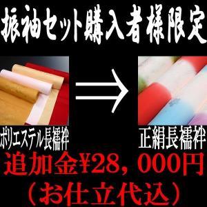 振袖セット専用 振袖用長襦袢 レベルUP 28,000円...
