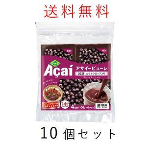 アサイー スムージー(ガラナ入り) 100g×40袋 フルッタ 冷凍 アサイーピューレ|kyodai
