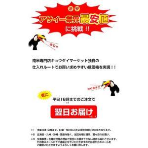 アサイー スムージー(ガラナ入り) 100g×40袋 フルッタ 冷凍 アサイーピューレ|kyodai|07