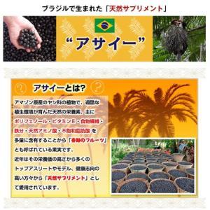アサイー スムージー(ガラナ入り) 100g×40袋 フルッタ 冷凍 アサイーピューレ|kyodai|08