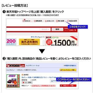 アサイー スムージー(ガラナ入り) 100g×40袋 フルッタ 冷凍 アサイーピューレ|kyodai|12