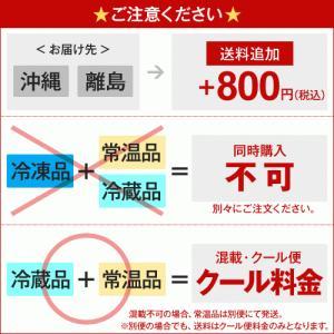 アサイー スムージー(ガラナ入り) 100g×60袋 フルッタ(冷凍) kyodai 02