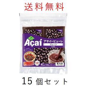 アサイー パルプ 100g×60袋 フルッタフルッタ (冷凍)  アサイーピューレ|kyodai