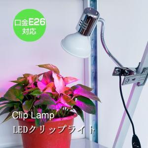 送料無料クリップライト デスクライト 口金E26  LED対応 フレキシブルアームで手軽に角度や方向を調整可能 卓上ライト スタンドランプ 電球なし|kyodo-store