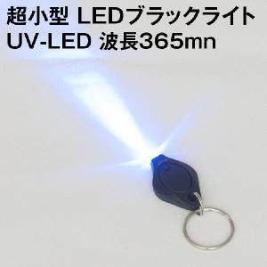超小型 LEDブラックライト 1灯使用 UV-LED 放射束ランク 紫外線 LED 1灯ポケットブラックライト キーチェーンタイプ|kyodo-store