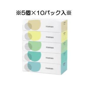 【送料無料!】【業務用】【ティッシュペーパー】イトマンECOティッシュ200W(5個×10パック)|kyoeinet