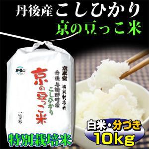 お米10kg 当日精米 丹後産 コシヒカリ 京の豆っこ米 (...