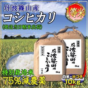 新米 28年産 コシヒカリ 10kg 白米 分づき可 兵庫県 丹波ささやま産 7.5割農薬減 検査一等米 当日精米 送料無料